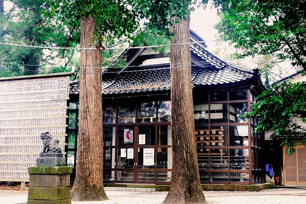 杉木立に囲まれる上野八幡神社拝殿