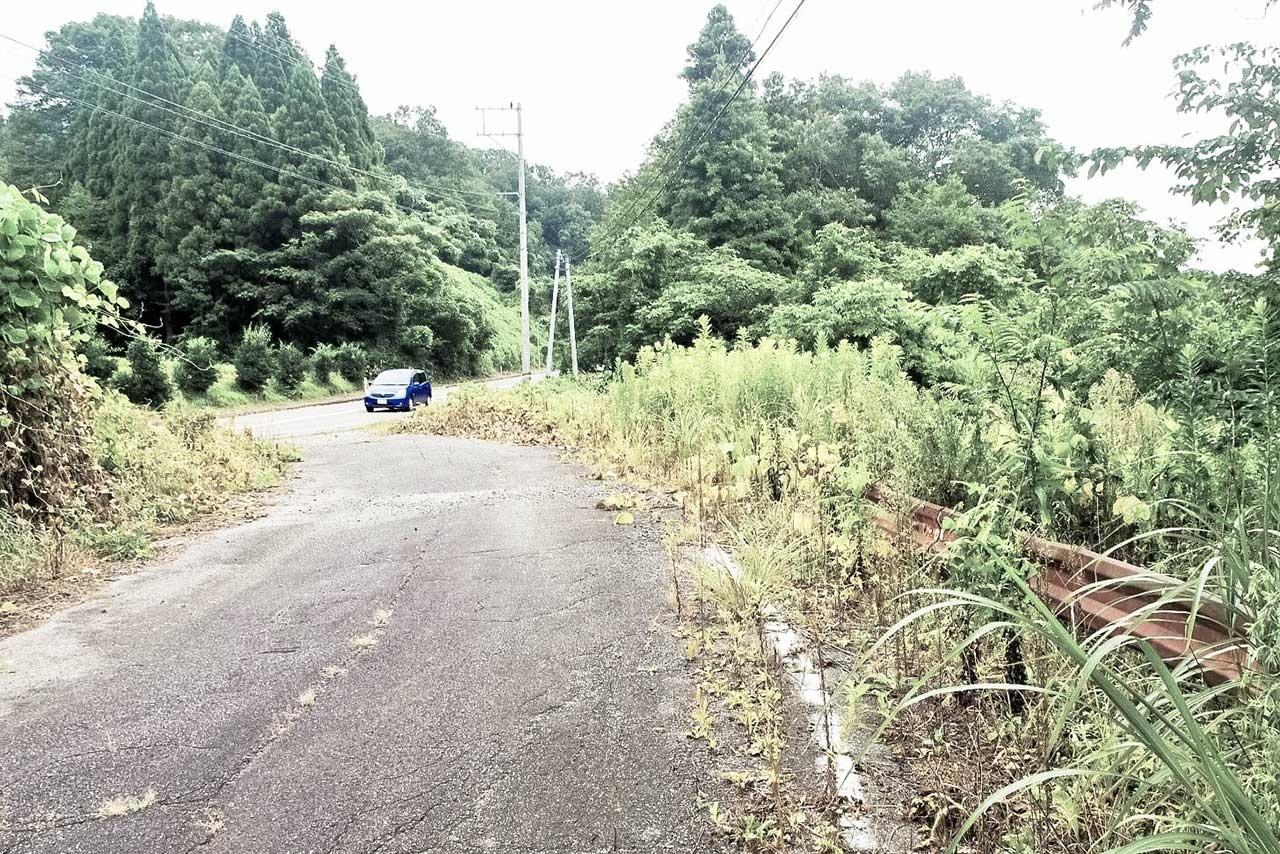 廃道となった旧桜井道路はかいもち坂の原形でもある。錆びたガードレール(右)が残る
