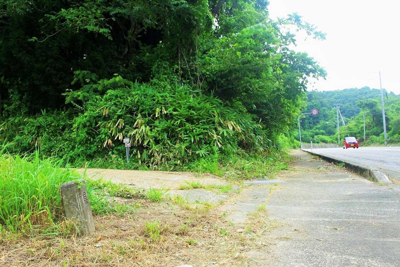 石野さんがいうかいもち坂の上り口にあたる茂み(左の農道の上)。道だった面影はない