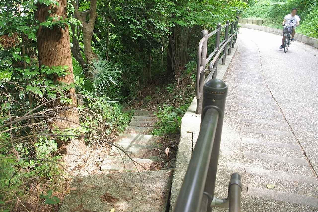 坂下の青雲寺につながる階段。だれでも通れる