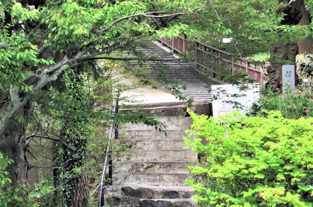 市道が分断する現在の帰厚坂(上)と元の帰厚坂とみられる石段(下)=浅野川左岸から