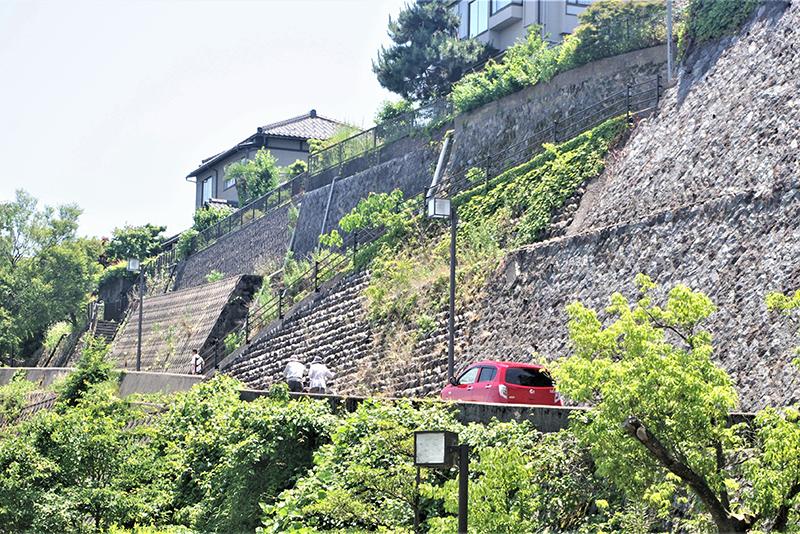 桜坂物語 - 段丘の有為転変