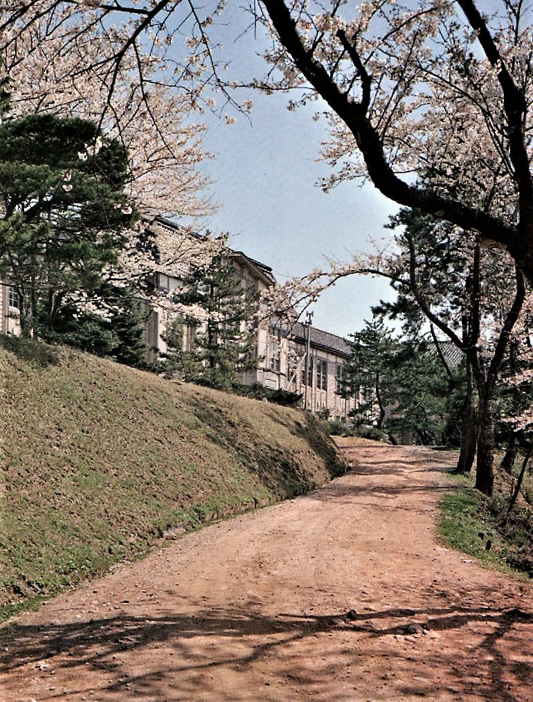 昭和36,7年頃の児安坂と校舎=「金沢三中・桜丘高校五十年史」より