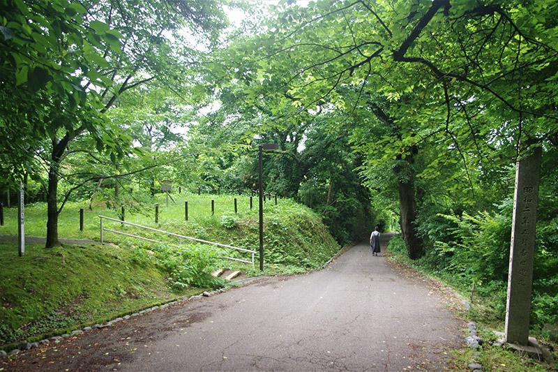 一本松は残った - 卯辰山十一坂のうち「一本松坂」