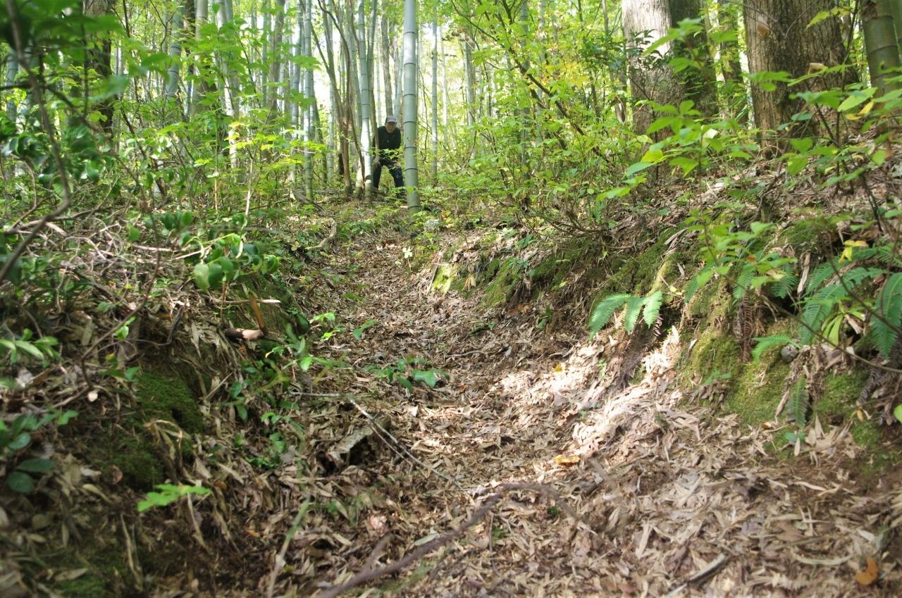 こぶらん坂。粘土層で滑りやすかった坂が落ち葉で埋まる