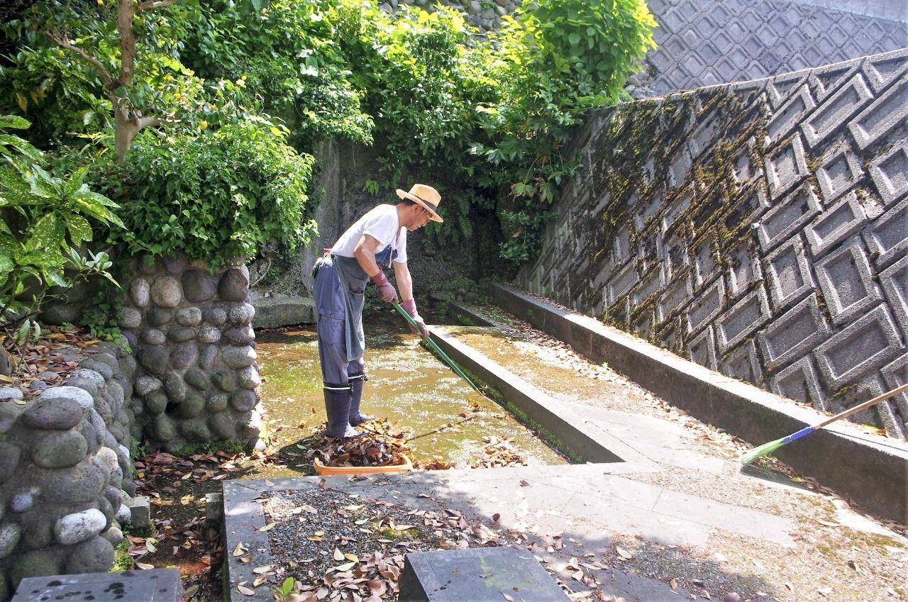 清水は奥の茂みから流れ落ちる。清掃するのは坂さん